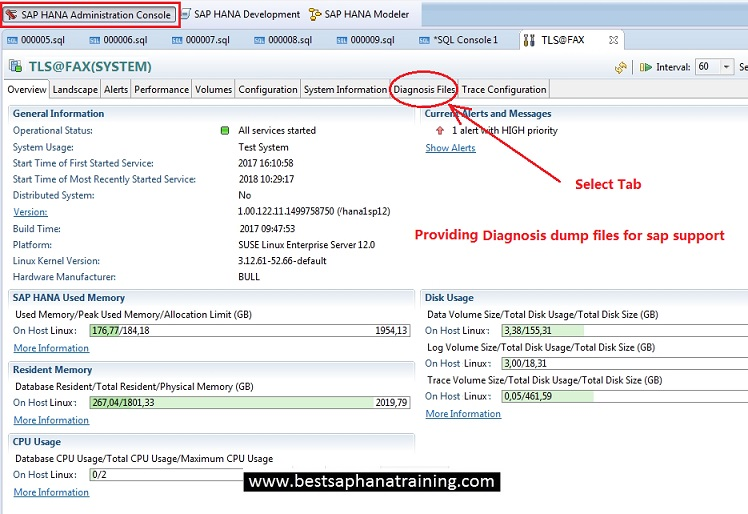 How to provide trace and diagnosis files to sap hana support?
