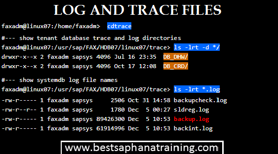 Log and trace directories