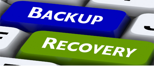 sap hana backup and recovery