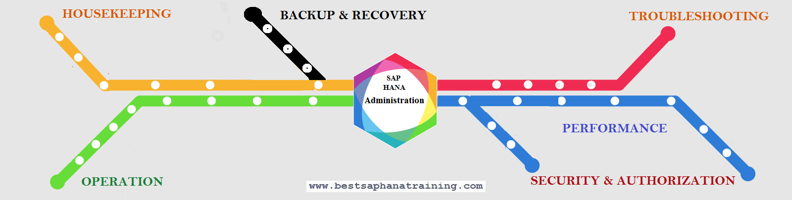 Sap Hana Administration and Operation  How to manage and operate Sap