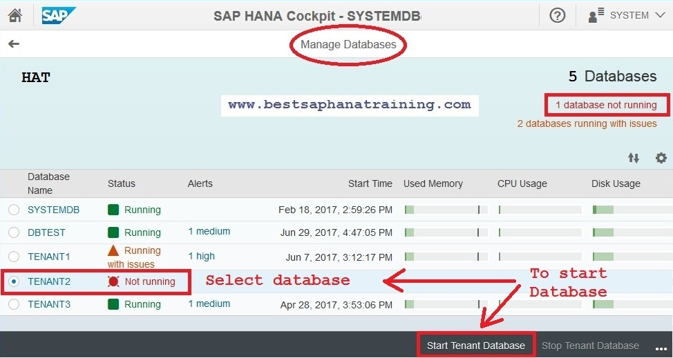 sap hana starting tenant database