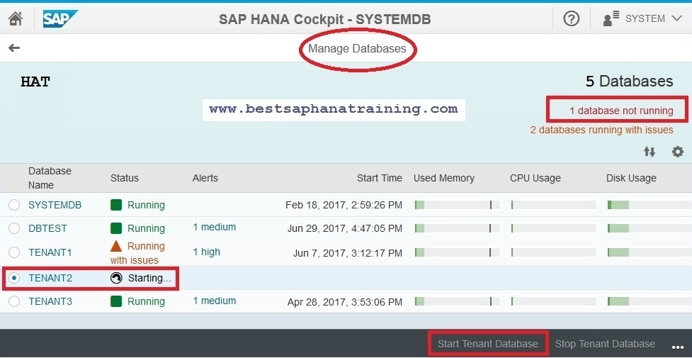 How to start or stop a sap hana tenant database?
