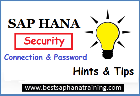 sap hana connection and security
