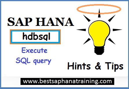 execute sql queries with sap hana hdbsql