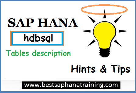 Sap hana table description with hdbsql