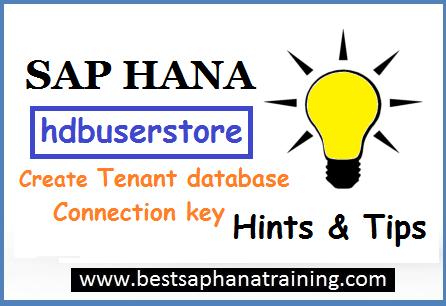 sap hana user store key tenant database connection