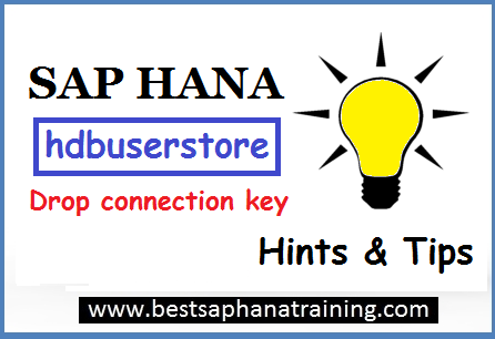 sap hana drop connection key