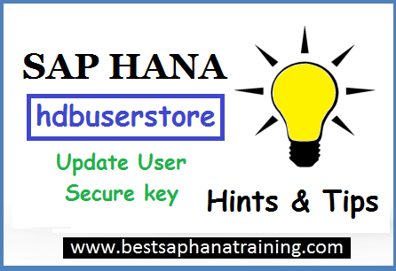 Sap hana user secure key update