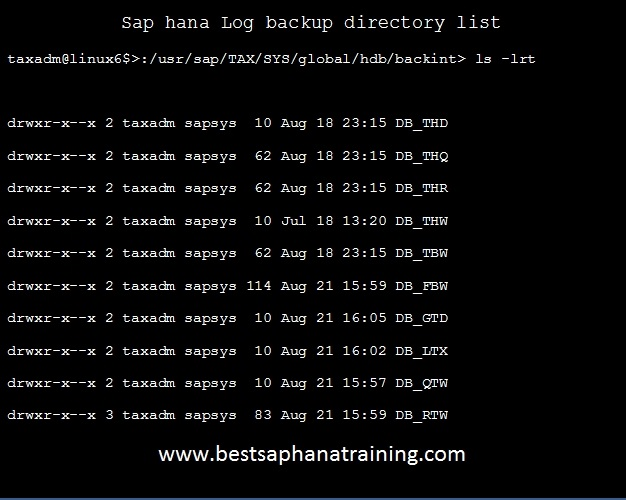 sap hana log backup directories