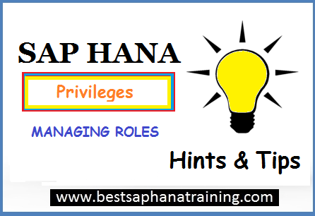 sap hana roles and privileges