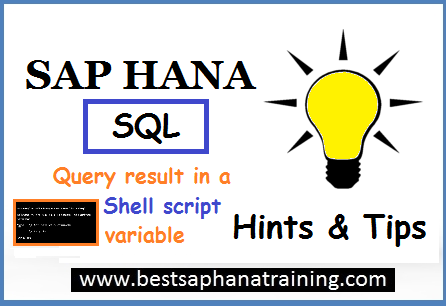 sap hana sql query result in shell script variable