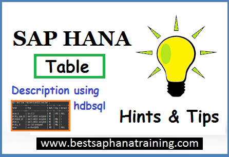 sap hana table description using hdbsql