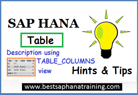 sap hana table description with TABLE_COLUMNS view