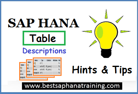 sap hana table description