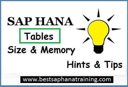Sap hana TABLE SIZE ON DISK