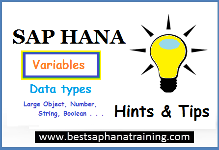 sap hana variable data types