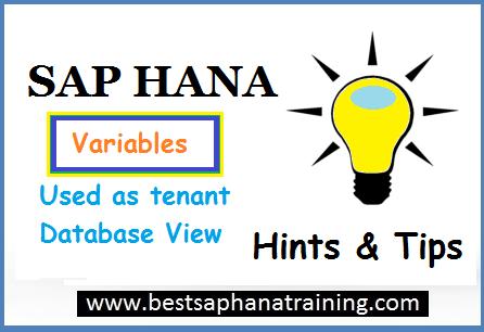 sap hana variable as database view