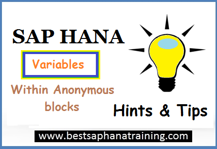 sap hana variable within anonymous block